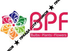 Bpf group руководство компании
